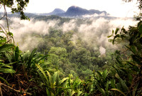 Viewpoint Hike near Borneo Rainforest Lodge